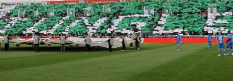welcome to the jungle omonoia fans